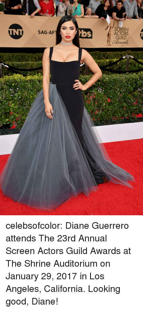 guild: SCREEN  ACTORS  GUILD  Award  SAG AF  bbs celebsofcolor:  Diane Guerrero attends The 23rd Annual Screen Actors Guild Awards at The Shrine Auditorium on January 29, 2017 in Los Angeles, California.  Looking good, Diane!