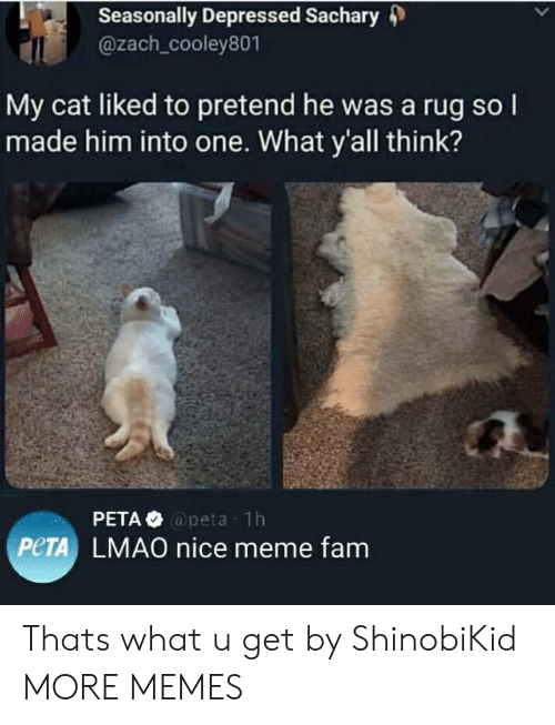 Dank, Fam, and Lmao: Seasonally Depressed Sachary 4)  @zach_cooley801  My cat liked to pretend he was a rug so l  made him into one. What y'all think?  @peta 1h  PeTA LMAO nice meme fam Thats what u get by ShinobiKid MORE MEMES