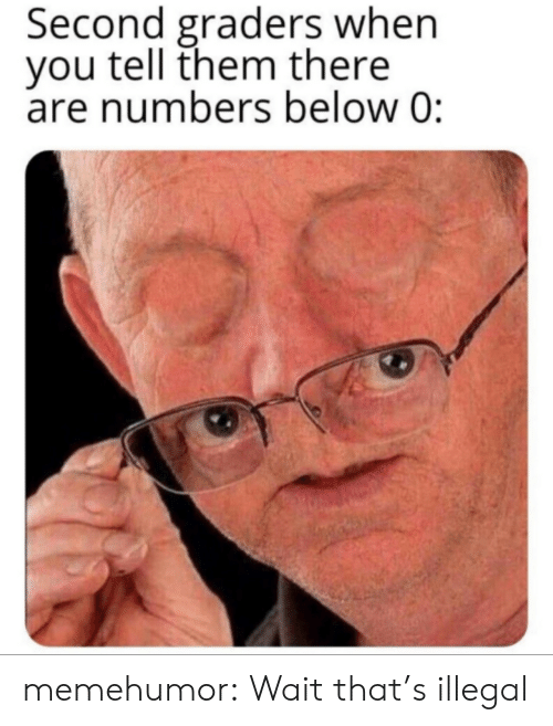 Tumblr, Blog, and Com: Second graders when  you tell them there  are numbers below 0: memehumor:  Wait that's illegal