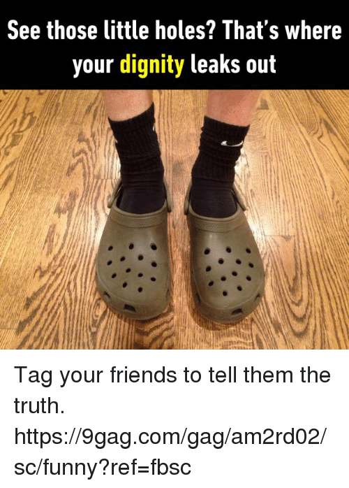 9gag, Dank, and Friends: See those little holes? That's where  your dignity leaks out Tag your friends to tell them the truth.  https://9gag.com/gag/am2rd02/sc/funny?ref=fbsc