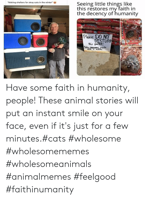 """Cats, Winter, and Animal: Seeing little things like  this restores my faith in  the decency of humanity  """"Making shelters for stray cats in the winter""""  Larthgro  COLOR  eegover  Please DO NO  DISTURB  this pallet!  Baby reccons nside  nest n middle Have some faith in humanity, people! These animal stories will put an instant smile on your face, even if it's just for a few minutes.#cats #wholesome #wholesomememes #wholesomeanimals #animalmemes #feelgood #faithinumanity"""