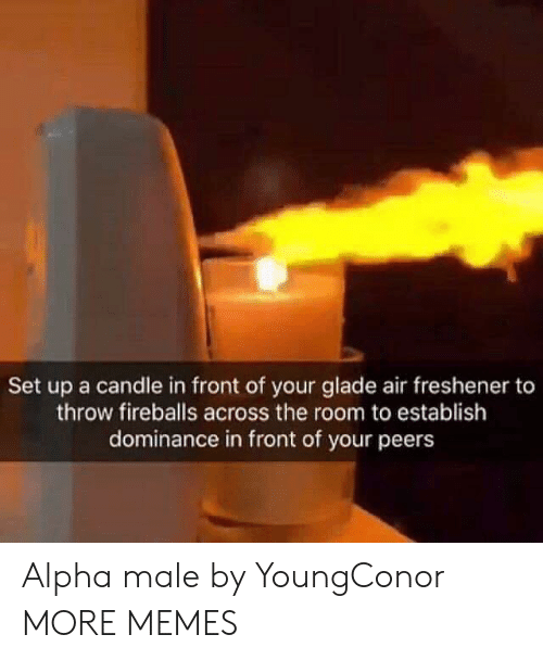 Dank, Memes, and Target: Set up a candle in front of your glade air freshener to  throw fireballs across the room to establish  dominance in front of your peers Alpha male by YoungConor MORE MEMES