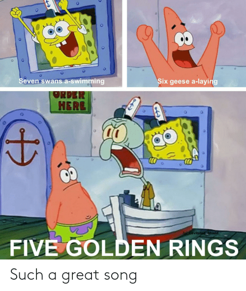 rings: Seven swans a-swimming  Six geese a-laying  ORDER  HERE  lu Levitated Shield  FIVE GOLDEN RINGS Such a great song
