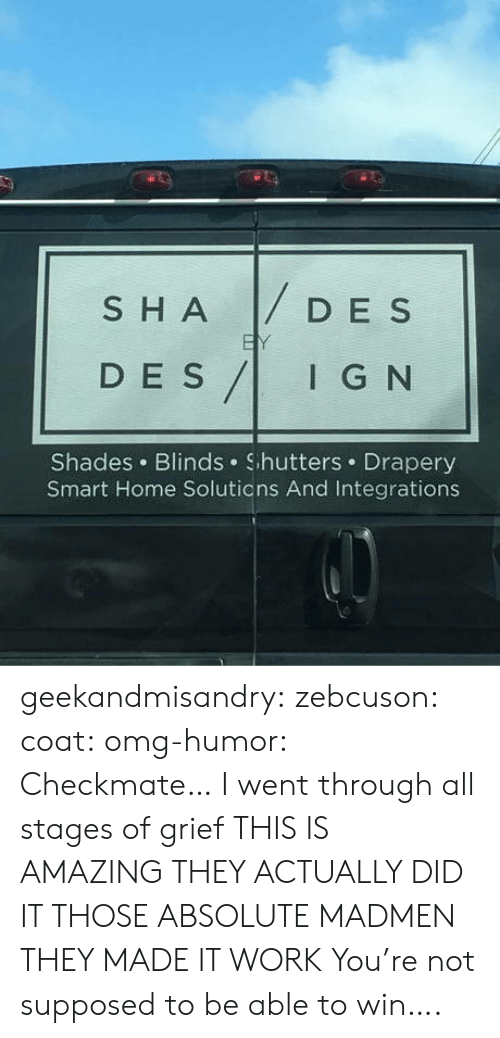 Omg, Tumblr, and Work: SHADESs  D E S  DES/IG N  I G N  Shades Blinds Shutters Drapery  Smart Home Solutions And Integrations geekandmisandry: zebcuson:  coat:  omg-humor: Checkmate…  I went through all stages of grief   THIS IS AMAZING THEY ACTUALLY DID IT THOSE ABSOLUTE MADMEN THEY MADE IT WORK   You're not supposed to be able to win….