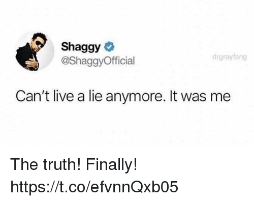 Funny, Live, and Truth: Shaggy  @ShaggyOfficial  drgrayfang  Can't live a lie anymore. It was me The truth! Finally! https://t.co/efvnnQxb05