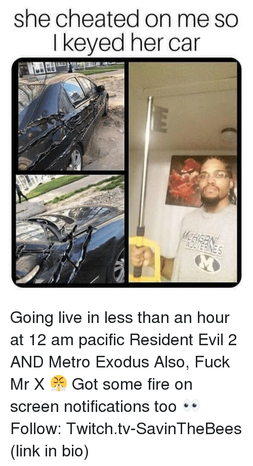 Twitch Tv: she cheated on me so  I keyed her car  IOLVERINES Going live in less than an hour at 12 am pacific Resident Evil 2 AND Metro Exodus Also, Fuck Mr X 😤 Got some fire on screen notifications too 👀 Follow: Twitch.tv-SavinTheBees (link in bio)