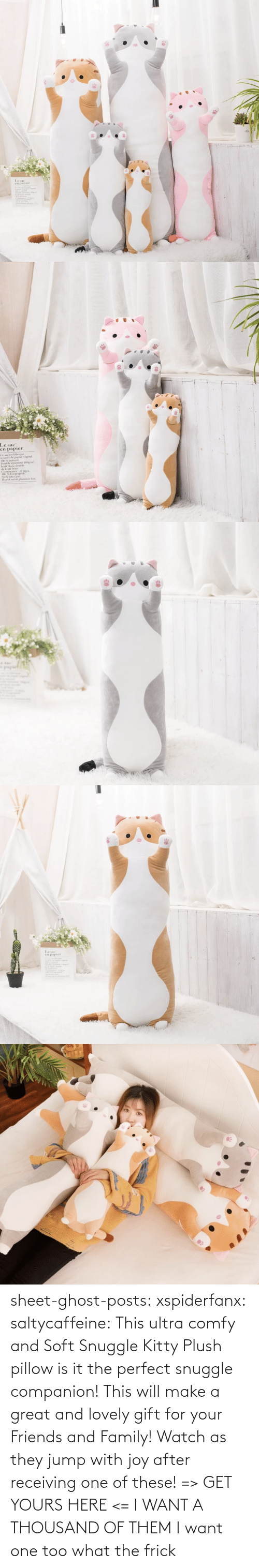 yours: sheet-ghost-posts: xspiderfanx:  saltycaffeine:  This ultra comfy and Soft Snuggle Kitty Plush pillow is it the perfect snuggle companion! This will make a great and lovely gift for your Friends and Family! Watch as they jump with joy after receiving one of these! => GET YOURS HERE <=    I WANT A THOUSAND OF THEM  I want one too what the frick