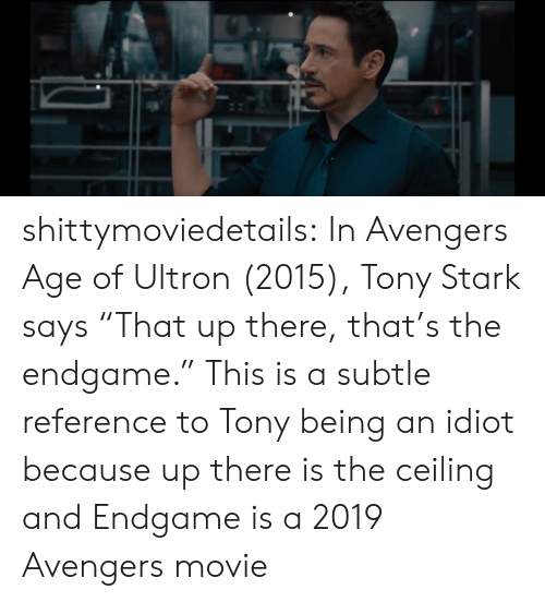 """Avengers Age of Ultron, Target, and Tumblr: shittymoviedetails:  In Avengers Age of Ultron (2015), Tony Stark says """"That up there, that's the endgame."""" This is a subtle reference to Tony being an idiot because up there is the ceiling and Endgame is a 2019 Avengers movie"""