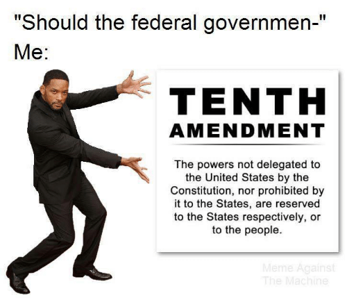 """Meme, Constitution, and United: """"Should the federal governmen-""""  Ме:  TENTH  AMENDMENT  The powers not delegated to  the United States by the  Constitution, nor prohibited by  it to the States, are reserved  to the States respectively, or  to the people.  Meme Against  The Machine"""