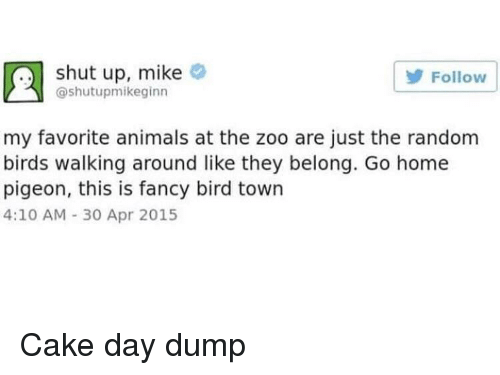 Animals, Shut Up, and Birds: shut up, mike  @shutupmikeginn  Follow  my favorite animals at the zoo are just the random  birds walking around like they belong. Go home  pigeon, this is fancy bird town  4:10 AM 30 Apr 2015 Cake day dump