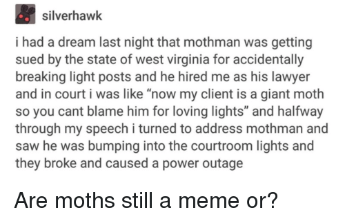 """A Dream, Lawyer, and Meme: silverhawk  i had a dream last night that mothman was getting  sued by the state of west virginia for accidentally  breaking light posts and he hired me as his lawyer  and in court i was like """"now my client is a giant moth  so you cant blame him for loving lights"""" and halfway  through my speech i turned to address mothman and  saw he was bumping into the courtroom lights and  they broke and caused a power outage Are moths still a meme or?"""