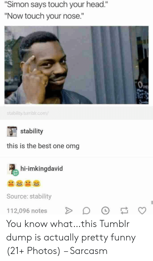 """Funny, Head, and Omg: """"Simon says touch your head.""""  """"Now touch your nose.""""  Man  stability.tumblo.com  stability  this is the best one omg  hi-imkingdavid  Source: stability  112,096 notes You know what…this Tumblr dump is actually pretty funny (21+ Photos) – Sarcasm"""