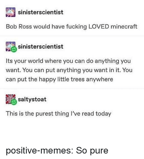 Fucking, Memes, and Minecraft: sinisterscientist  Bob Ross would have fucking LOVED minecraft  sinierscientist  Its your world where you can do anything you  want. You can put anything you want in it. You  can put the happy little trees anywhere  altystoat  This is the purest thing I've read today positive-memes:  So pure