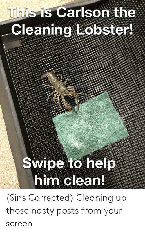 nasty: (Sins Corrected) Cleaning up those nasty posts from your screen