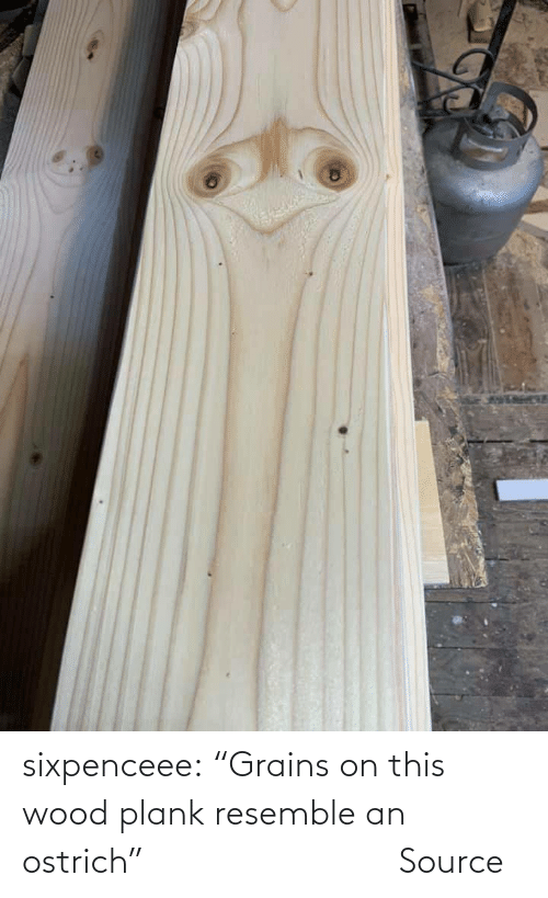 """reddit: sixpenceee:   """"Grains on this wood plank resemble an ostrich""""                Source"""
