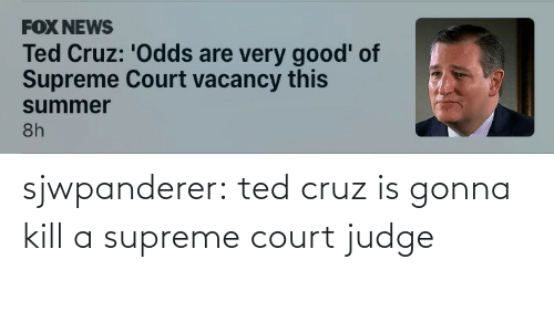 judge: sjwpanderer:  ted cruz is gonna kill a supreme court judge