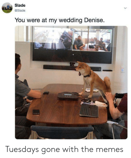 Memes, Wedding, and Gone: Slade  @Slade  You were at my wedding Denise. Tuesdays gone with the memes
