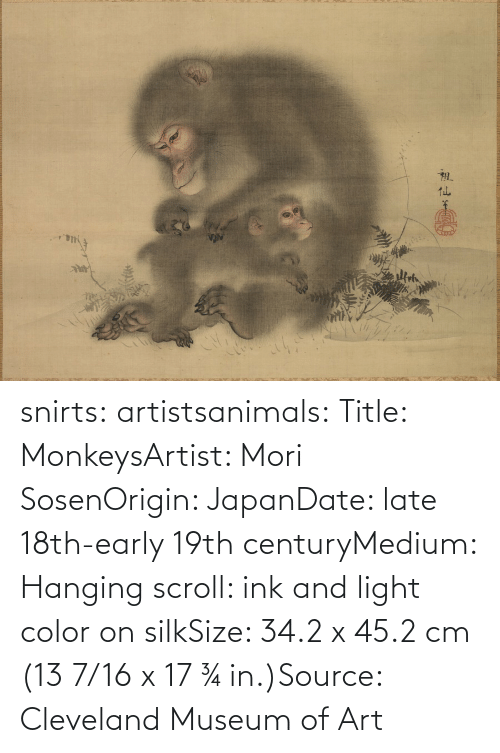 Title: snirts: artistsanimals: Title: MonkeysArtist: Mori SosenOrigin: JapanDate: late 18th-early 19th centuryMedium: Hanging scroll: ink and light color on silkSize: 34.2 x 45.2 cm (13 7/16 x 17 ¾ in.)Source: Cleveland Museum of Art