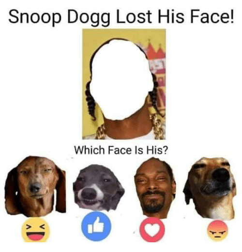 Snoop, Snoop Dogg, and Lost: Snoop Dogg Lost His Face!  Which Face Is His?