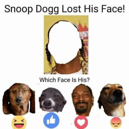 Dank, Snoop, and Snoop Dogg: Snoop Dogg Lost His Face!  Which Face Is His?
