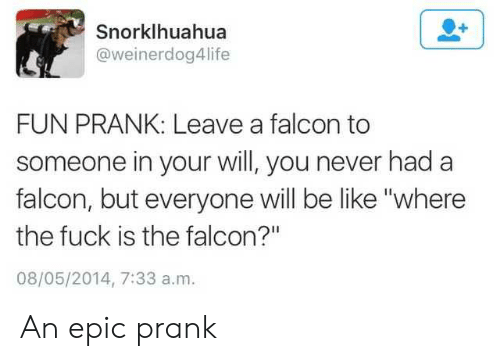 "Be Like, Prank, and Fuck: Snorklhuahua  @weinerdog4life  FUN PRANK: Leave a falcon to  someone in your will, you never had a  falcon, but everyone will be like ""where  the fuck is the falcon?""  08/05/2014, 7:33 a.m. An epic prank"