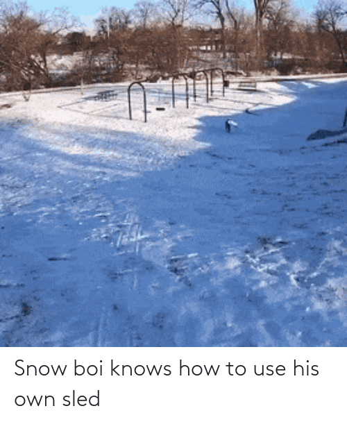 use: Snow boi knows how to use his own sled
