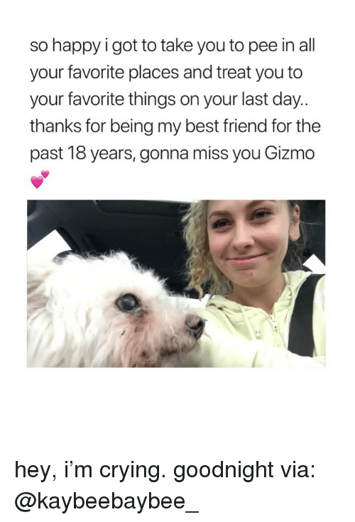 Favorite Things: so happy i got to take you to pee in all  your favorite places and treat you to  your favorite things on your last day  thanks for being my best friend for the  past 18 years, gonna miss you Gizmo hey, i'm crying. goodnight via: @kaybeebaybee_