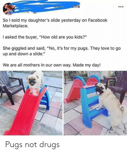 """Dank, Drugs, and Facebook: So l sold my daughter's slide yesterday on Facebook  Marketplace.  I asked the buyer, """"How old are you kids?""""  She giggled and said, """"No, it's for my pugs. They love to go  up and down a slide.""""  We are all mothers in our own way. Made my day! Pugs not drugs"""