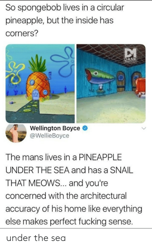 Dank, Fucking, and SpongeBob: So spongebob lives in a circular  pineapple, but the inside has  corners?  DANK  Wellington Boyce e  @WellieBoyce  The mans lives in a PINEAPPLE  UNDER THE SEA and has a SNAIL  THAT MEOWS... and you're  concerned with the architectural  accuracy of his home like everything  else makes perfect fucking sense. under the sea