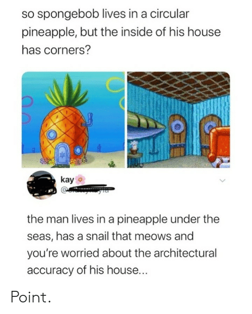 worried: so spongebob lives in a circular  pineapple, but the inside of his house  has corners?  kay  the man lives in a pineapple under the  seas, has a snail that meows and  you're worried about the architectural  accuracy of his house... Point.