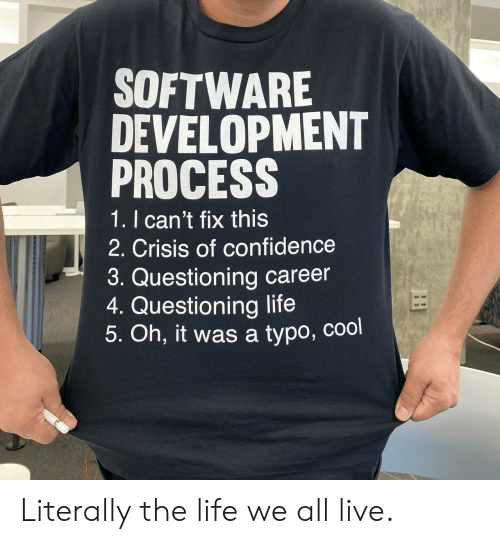 Questioning: SOFTWARE  DEVELOPMENT  PROCESS  1. I can't fix this  2. Crisis of confidence  3. Questioning career  4. Questioning life  5. Oh, it was a typo, cool Literally the life we all live.