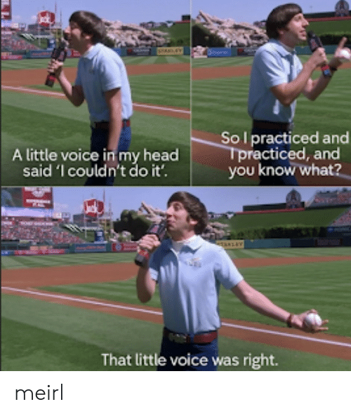 Head, Voice, and MeIRL: Sol practiced and  Tpracticed, and  you know what?  A little voice in my head  said 'l couldn't do it'.  TAKLEY  That little voice was right. meirl