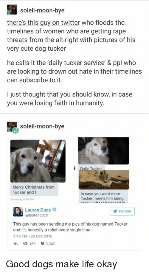 alt-right: soleil-moon-bye  there's this guy on twitter who floods the  timelines of women who are getting rape  threats from the alt-right with pictures of his  very cute dog tucker  he calls it the 'daily tucker service' & ppl who  are looking to drown out hate in their timelines  can subscribe to it.  I just thought that you should know, in case  you were losing faith in humanity.  soleil-moon-bye  Daily Tucker  Merry Christmas from  Tucker and I  In case you want more  Tucker, here's him being  Yesterday 9:48 PM  Lauren Duca  @laurenduca  Follow  This guy has been sending me pics of his dog named Tucker  and it's honestly a relief every single time  5:48 PM 26 Dec 2016  189 3,342 Good dogs make life okay