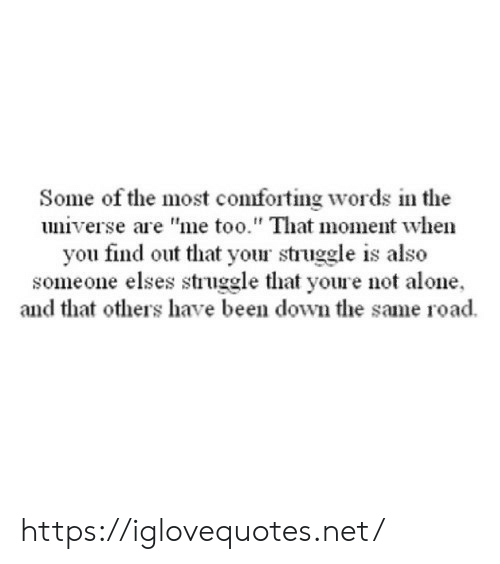 """Not Alone: Some of the most comforting words in the  universe are """"me too."""" That moment when  you find out that your struggle is also  someone elses struggle that youre not alone  and that others have been down the same road https://iglovequotes.net/"""
