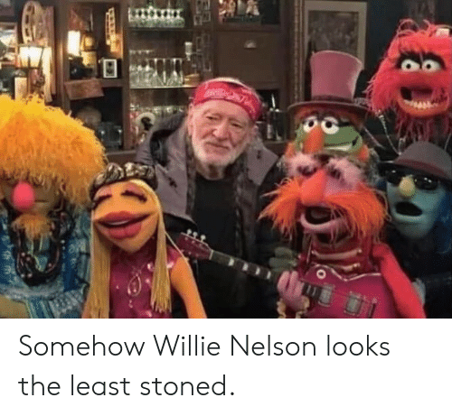 willie: Somehow Willie Nelson looks the least stoned.