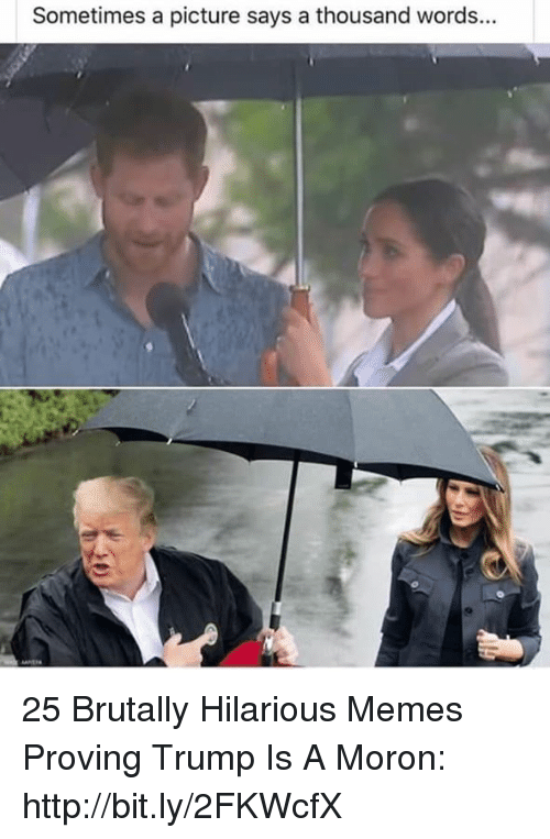 Trump Is A: Sometimes a picture says a thousand words... 25 Brutally Hilarious Memes Proving Trump Is A Moron: http://bit.ly/2FKWcfX