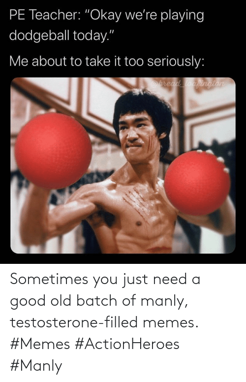 sometimes: Sometimes you just need a good old batch of manly, testosterone-filled memes. #Memes #ActionHeroes #Manly
