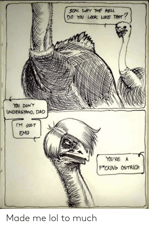 son: SON, WAHY THE HELL  DO YOU LOOK LIKE THAT?  YOU DON'T  UNDERSTAND, DAD  I'M JUST  EMU  YOU'RE A  P*CKING OSTRICH Made me lol to much