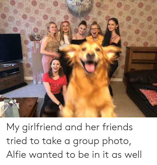 Friends, Girlfriend, and Her: SOPHIE  WILLS  ae My girlfriend and her friends tried to take a group photo, Alfie wanted to be in it as well