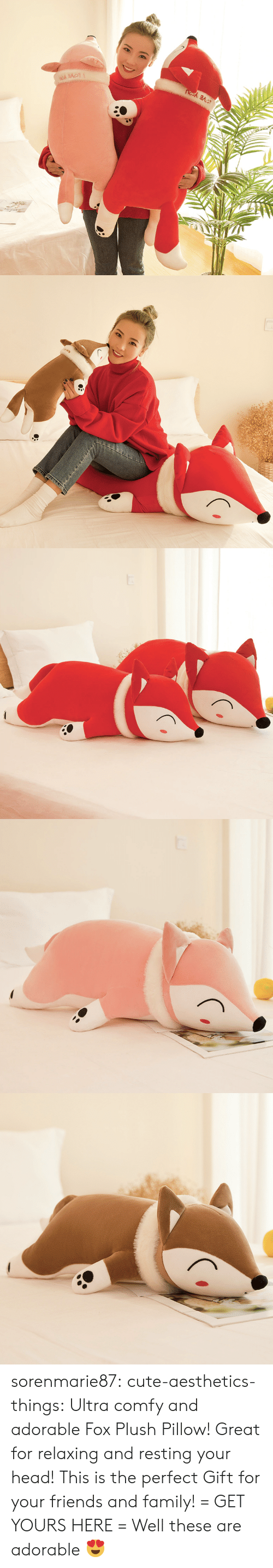 Cute, Family, and Friends: sorenmarie87: cute-aesthetics-things:  Ultra comfy and adorable Fox Plush Pillow! Great for relaxing and resting your head! This is the perfect Gift for your friends and family! = GET YOURS HERE =   Well these are adorable 😍