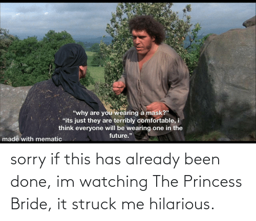done: sorry if this has already been done, im watching The Princess Bride, it struck me hilarious.