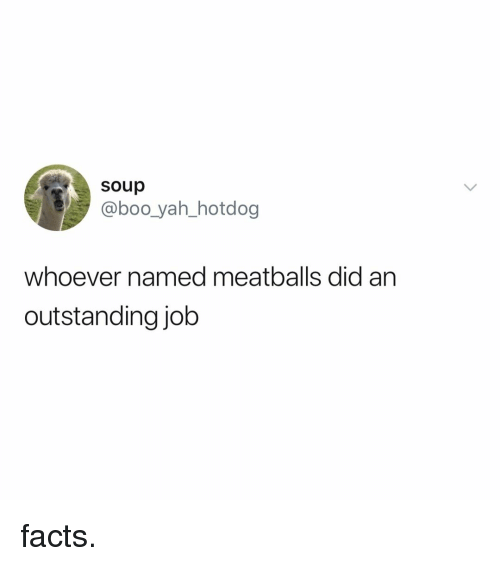 Boo, Facts, and Yah: soup  @boo_yah_hotdog  whoever named meatballs did an  outstanding job facts.