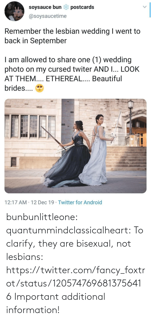 Information: soysauce bun * postcards  @soysaucetime  Remember the lesbian wedding I went to  back in September  I am allowed to share one (1) wedding  photo on my cursed twiter AND I... LOOK  AT THEM.... ETHEREAL.... Beautiful  brides...  12:17 AM · 12 Dec 19 · Twitter for Android bunbunlittleone:  quantummindclassicalheart:  To clarify, they are bisexual, not lesbians: https://twitter.com/fancy_foxtrot/status/1205747696813756416    Important additional information!