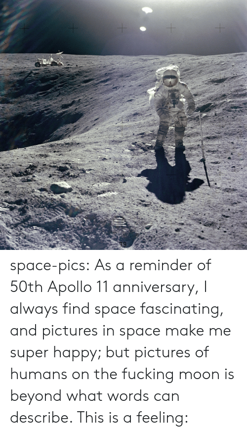 Apollo: space-pics:  As a reminder of 50th Apollo 11 anniversary, I always find space fascinating, and pictures in space make me super happy; but pictures of humans on the fucking moon is beyond what words can describe. This is a feeling: