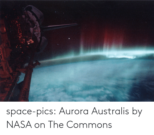 NASA: space-pics:  Aurora Australis by NASA on The Commons