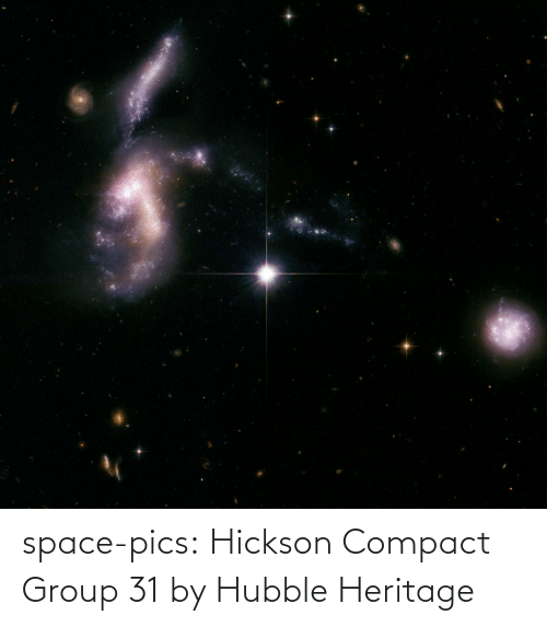 Space: space-pics:  Hickson Compact Group 31 by Hubble Heritage