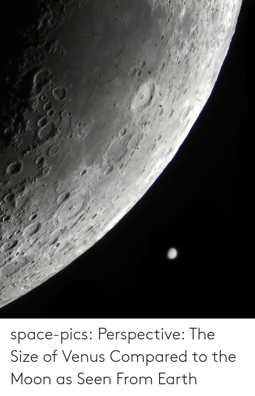 Moon: space-pics:  Perspective: The Size of Venus Compared to the Moon as Seen From Earth
