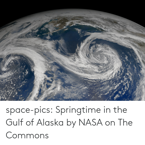 NASA: space-pics:  Springtime in the Gulf of Alaska by NASA on The Commons