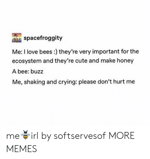 Crying, Cute, and Dank: spacefroggity  Me: I love bees:) they're very important for the  ecosystem and they're cute and make honey  A bee: buzz  Me, shaking and crying: please don't hurt me me🐝irl by softservesof MORE MEMES
