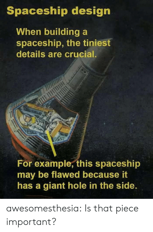 spaceship: Spaceship design  When building a  spaceship, the tiniest  details are crucial.  For example, this spaceshi  may be flawed because it  has a giant hole in the side. awesomesthesia:  Is that piece important?